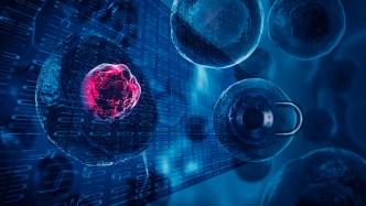 biological encryption keys enhance security