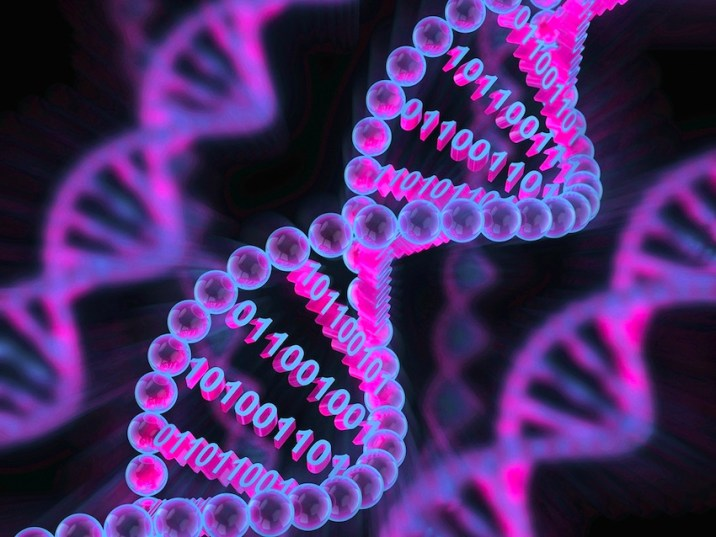First Bacterial Genome Using A Computer Algorithm