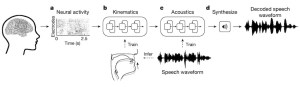 AI generate Speech from neural activity
