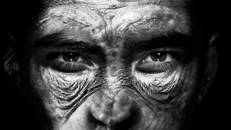 Human-monkey hybrids