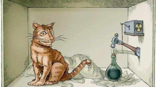 Schrödinger Cat States with 20 qubits