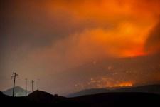 Wildfires damage ozone layer