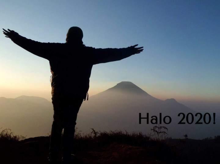 halo 2020