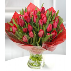 3 dozen red tulips bouquet