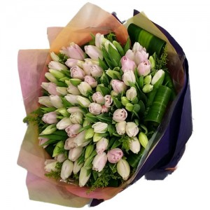 50 Pink Tulips Bouquet