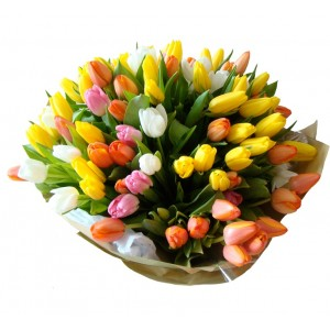 My Endless Love (50 Tulips)