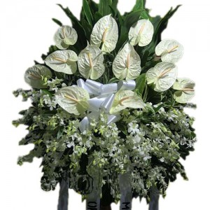 White Anthuriums and Orchids Funeral Stand