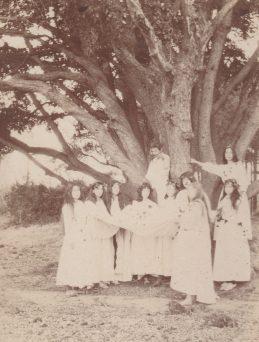 Léoube - Nous faisons les druides sous le chêne - Collection Mireille Caire