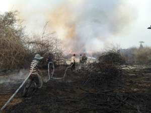 Fighting wildfires in the Tonle Sap Biosphere Reserve. Credit: WCS-Cambodia