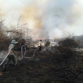 RRF answers call to avert wildfire disaster in Cambodia