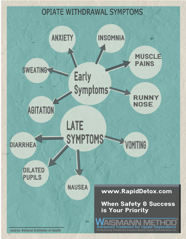 Rapid Detox - Heroin On the Rise - Infographic