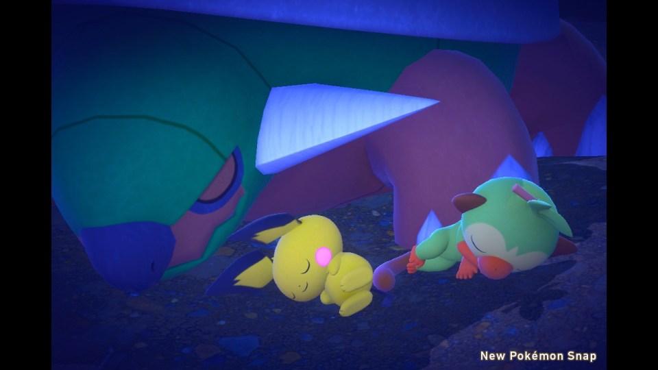 A Pichu and Grooky sleep alongside a Torterra.