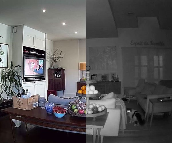A greyscale nightvision view of a living room