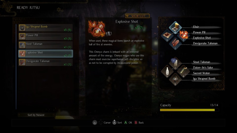 Different prepared are pictured on he left, a description of the explosive shot is in the middle and on the right are the shortcut options for usable items