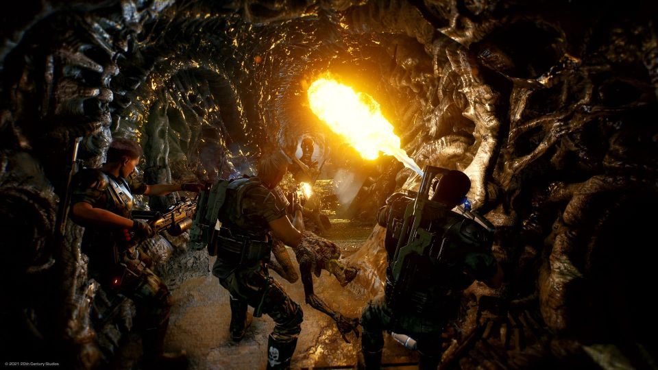 Three space marines use flamethrowers to burn the hallway of a xenomorph nest.