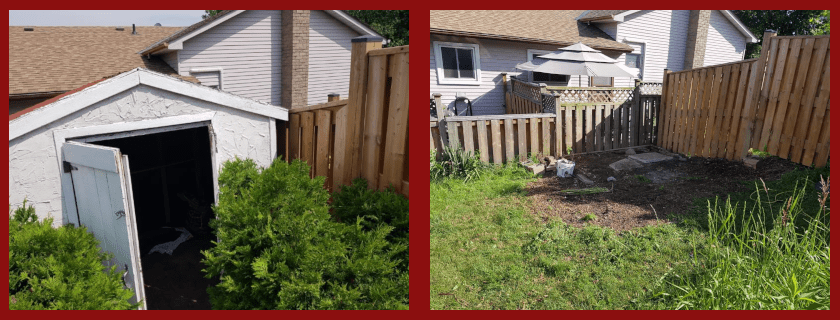 Unwanted shrubs, an old shed and then yardspace.