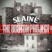 BostonProject500