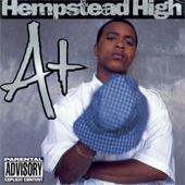 A+ – Hempstead High