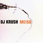 Krush95500