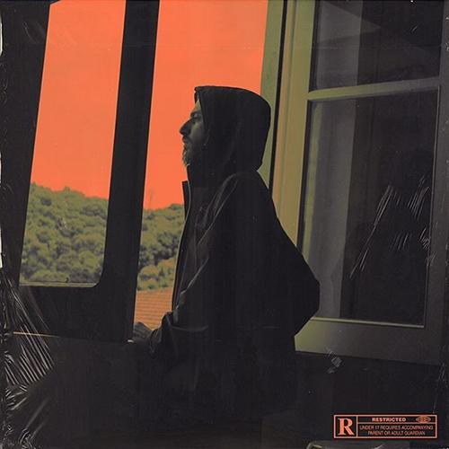 D.Ratz – Agent orange 2
