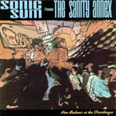 Sonic Sum – The Sanity Annex