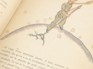 Le Petit Prince (The Little Prince).
