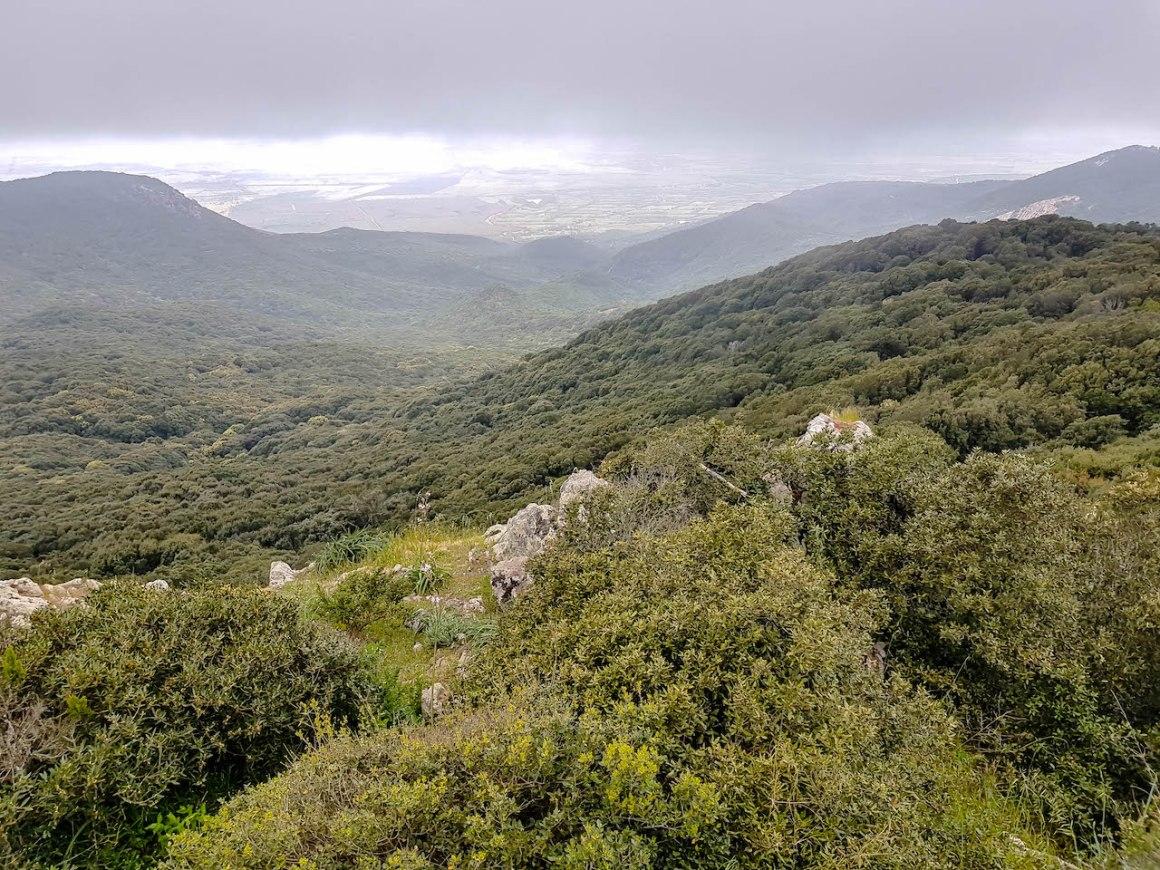 Het natuurpark van Monte Arci.
