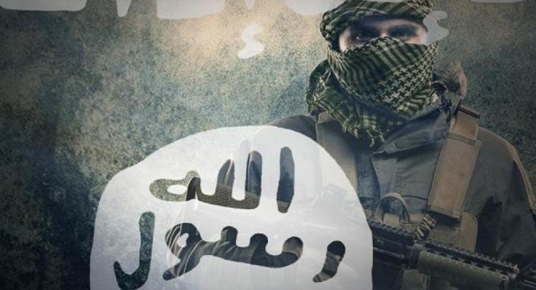 دراسات جديدة تثبت عودة تنظيم الدولة إلى ساحة سوريا والعراق