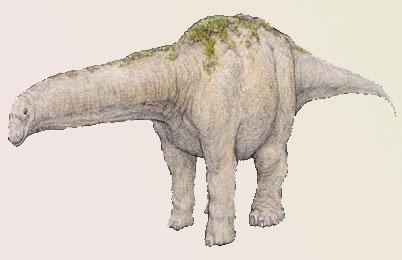 Bruhathkayosaurus Courtesy of Rareresource.com