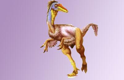 Saurornitholestes Dinosaur