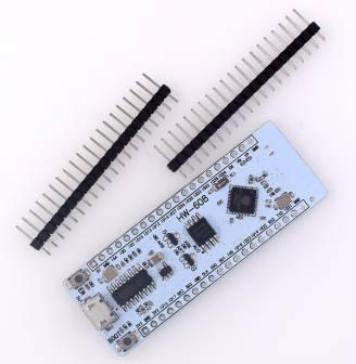 Scheda di sviluppo AIR ESP32 / modulo integrato dual-core Bluetooth WIFI 16M