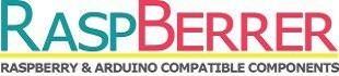 raspberrer logo