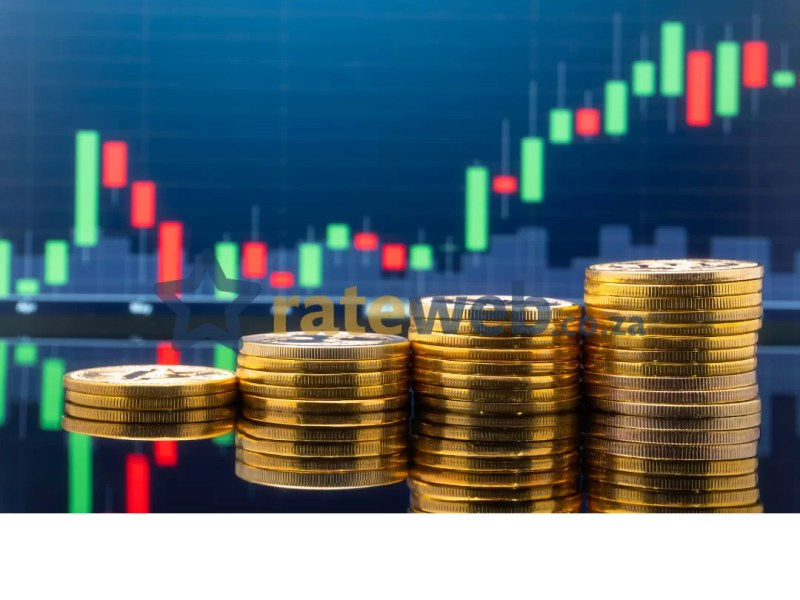 South Africa's top 7 dividend stocks in 2021