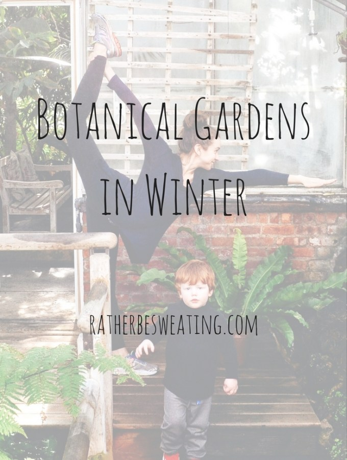 Botanical Gardens in Winter