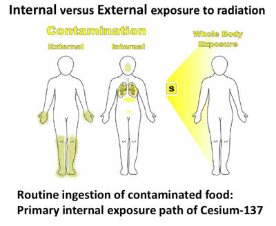 Internal versus External exposure to radiation