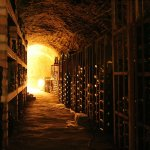 Things To Consider When Cellaring Wines