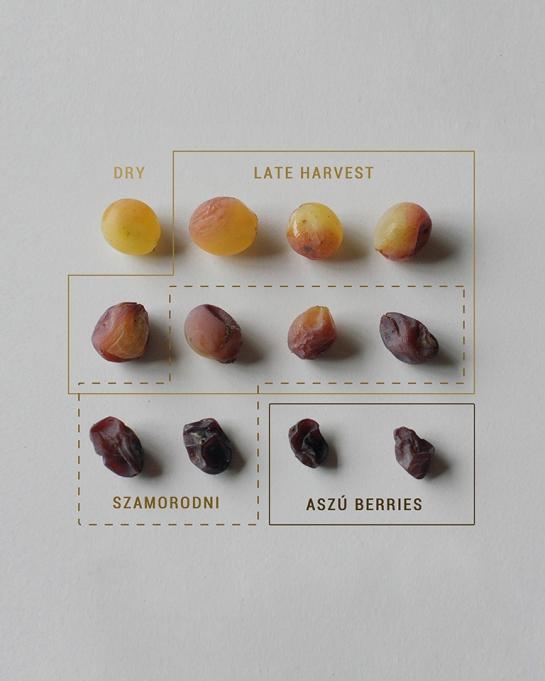 Tokaji Aszu Berries