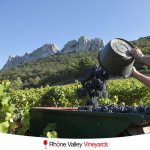 The Rhône Valley in 1,000 Words Or Less