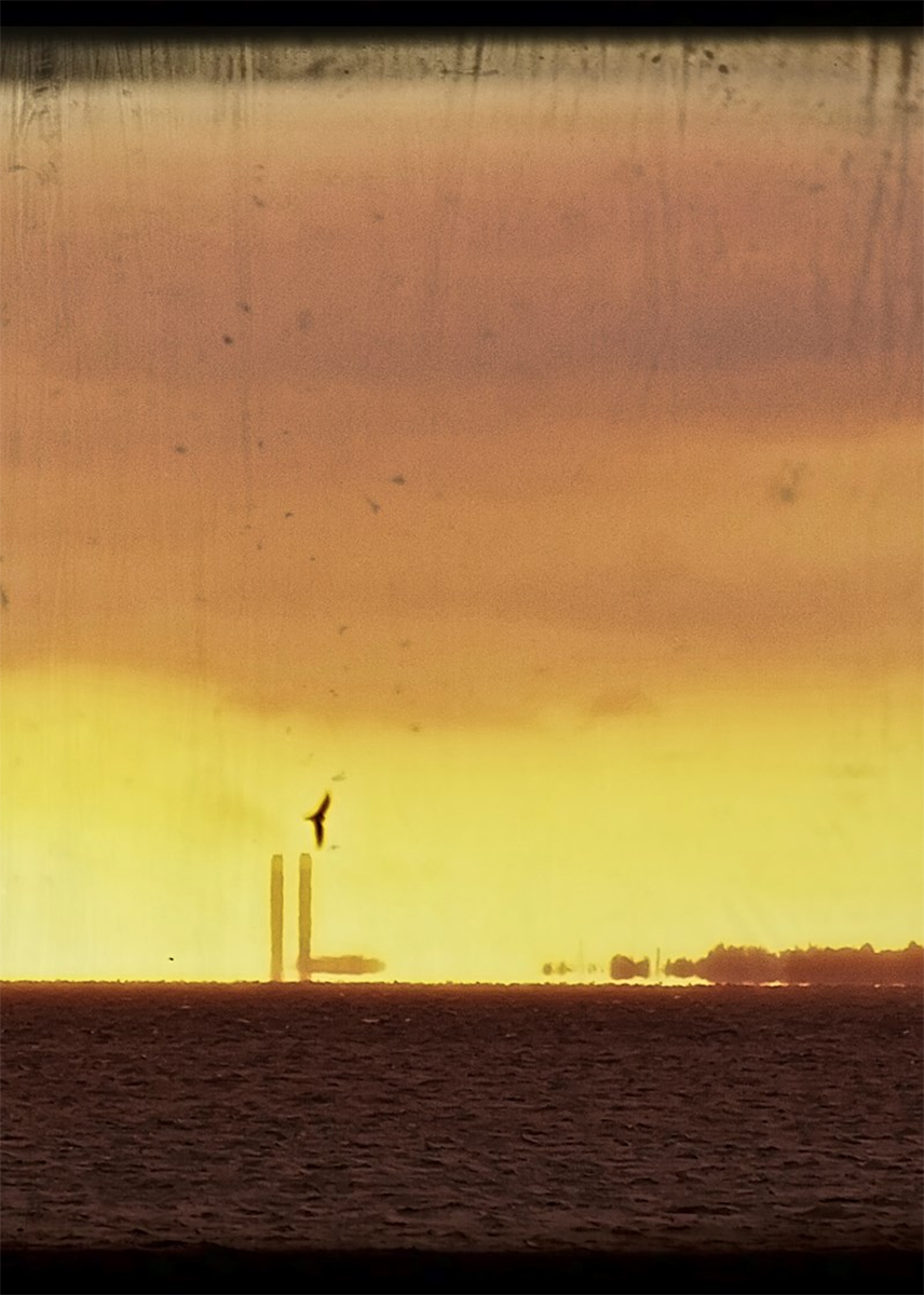 Image by Lynn Tait, orange-yellow sunset with bird and smokestacks in the distance