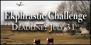 Ekphrastic Challenge, deadline at the end of the month, image of a two cows in a field beneath an airplane