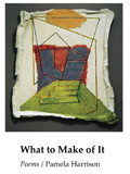 What to Make of It by Pamela Harrison