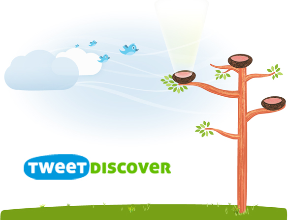TweetDiscover: Plataforma de análisis para Social Media y campañas de marketing en Twitter