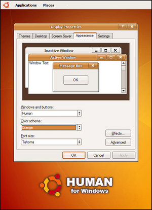 Windows XP con apariencia de Linux