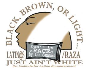 Black, Brown or Light 2