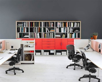 Meridian Bookcase with Aerons