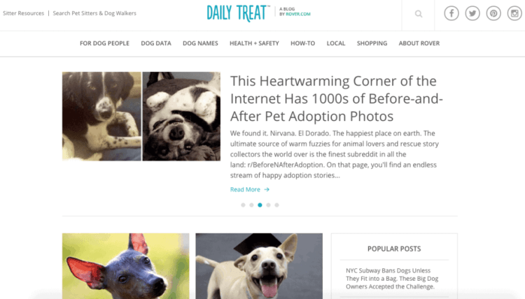 Best Pet Websites For Rave Reviews - Every day this dog goes shopping all by himself to get treats