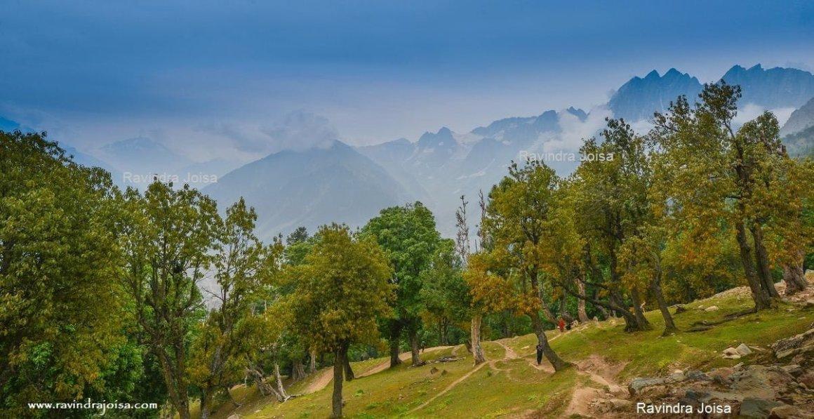 Kashmir Great Lakes Trek Sonamarg to Nichnai