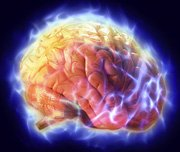 Mind Over Matter Electrical Brain