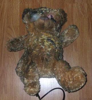 Bloody Teddy