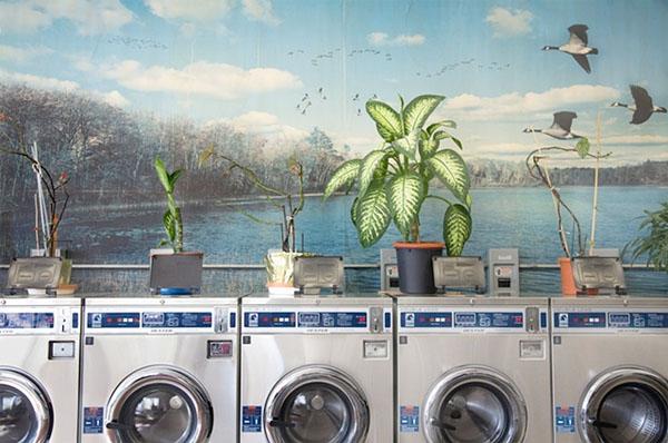 Laundromat 1